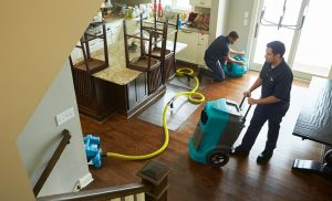 Water Damage 101: How To Find The Right Company For The Job!