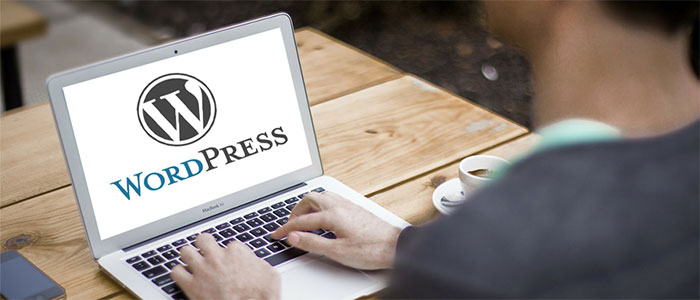 What are the Benefits of Using WordPress for Developing a Business Website?
